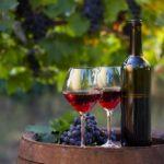 Best-Wine-Glasses