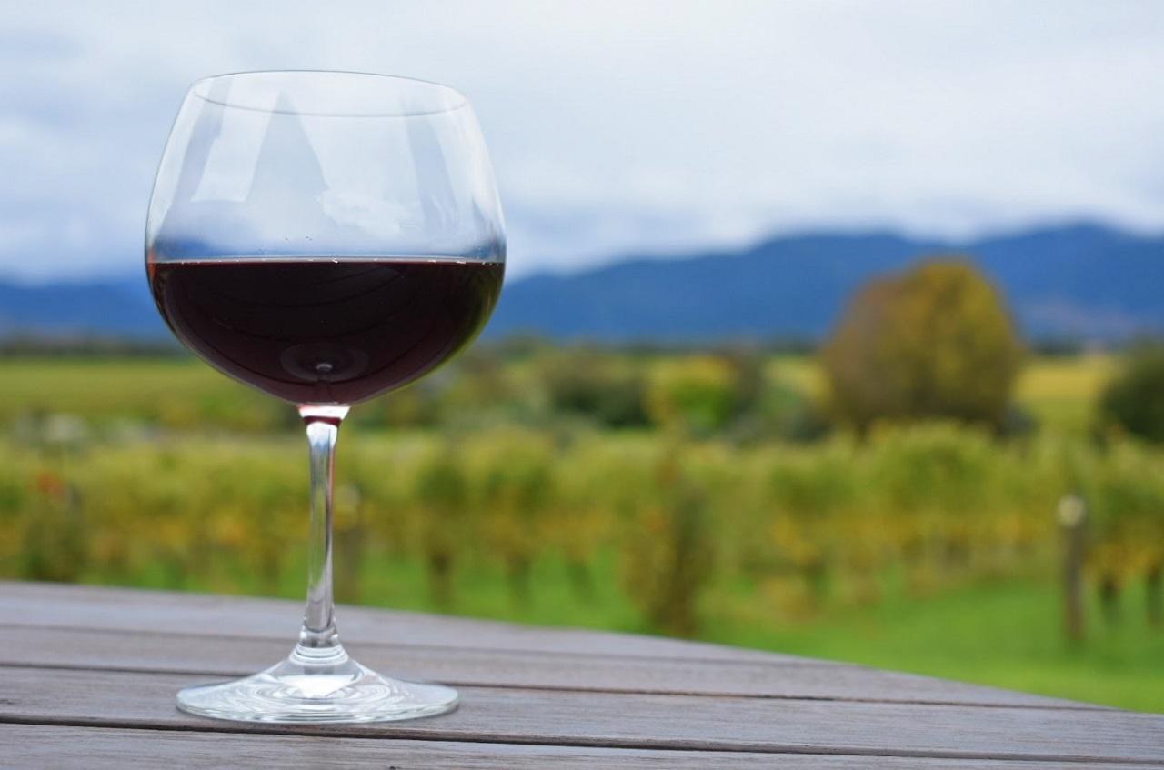 A-Glass-of-Pinot-Noir