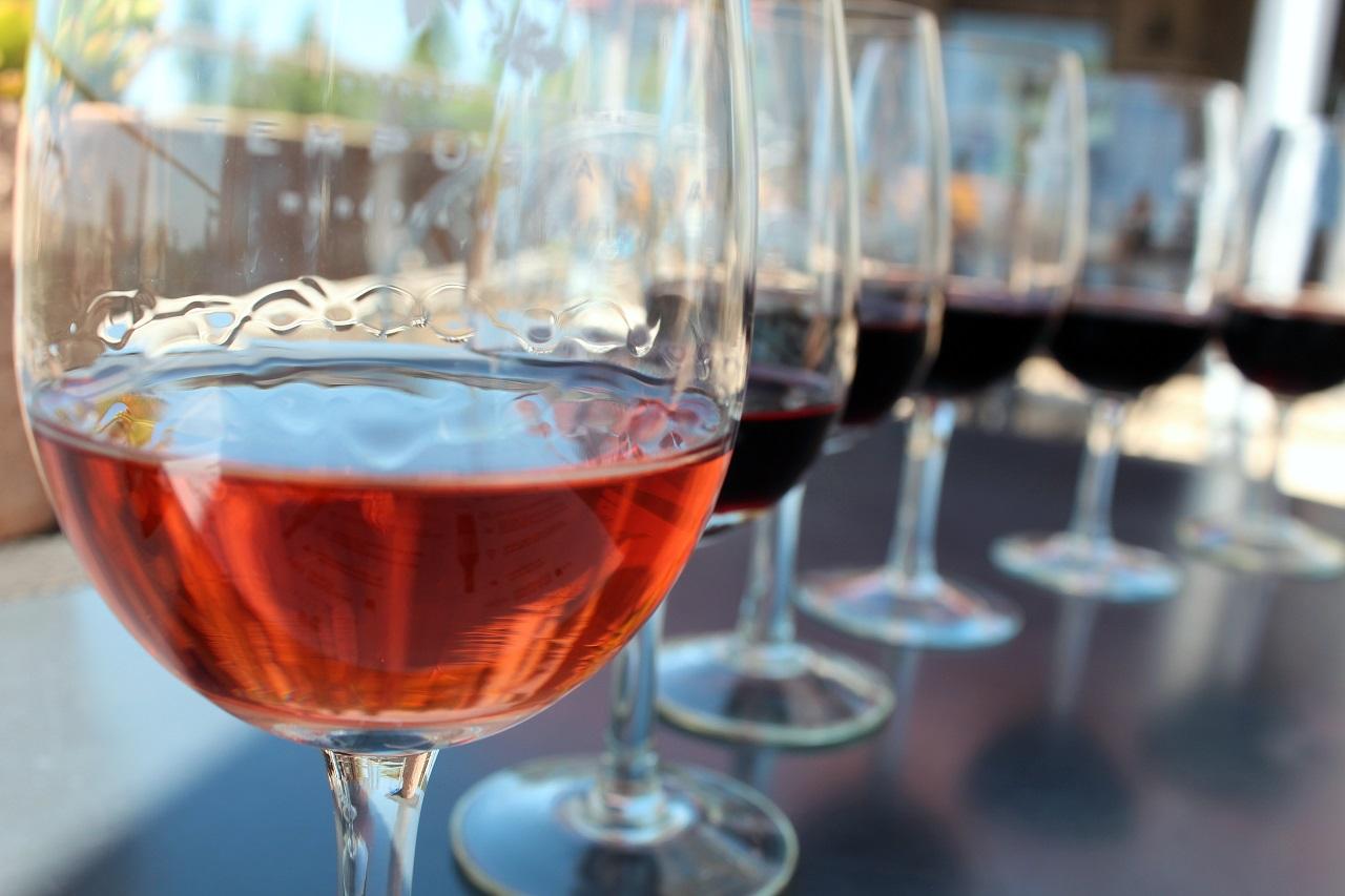 Rose-Malbec-Cabernet-Sauvignon-Merlot-Tempranillo-Syrah-Wine-Degustation-in-the-sunny-vineyard-in-Mendoza-Argentina