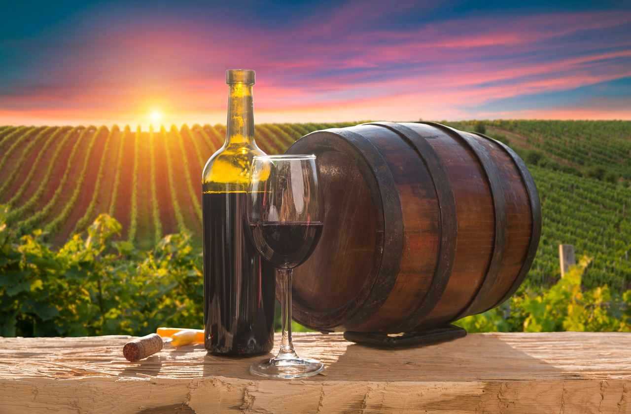 White-wine-with-barrel-on-vineyard-in-Chianti-Tuscany-Italy